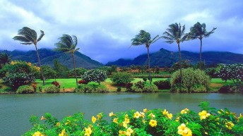 Travels & Places: Hawaii