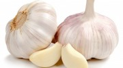 How to Grow Garlic | Choosing your Garlic